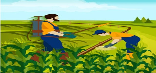 Agricultural Adjuvants Market Research Report by Crop, by Function, by Formulation, by Chemical Group, by Application